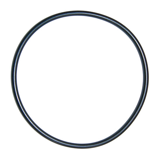 Уплотнительное кольцо крышки волосоловки насоса Badu
