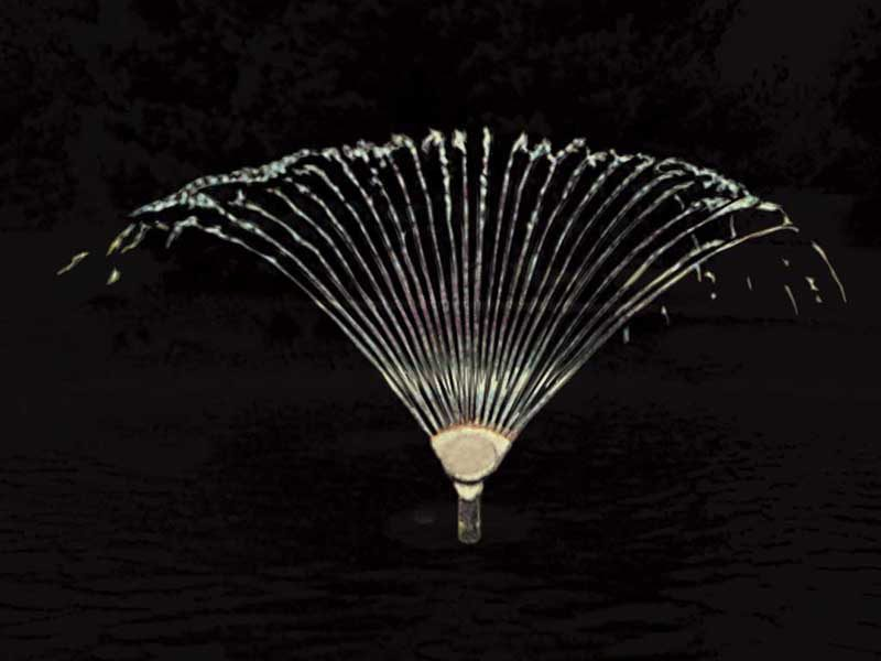 Форсунка фонтанная Finger Jet 13-4T, 1″, O 4 мм, 12 сопел, бронза